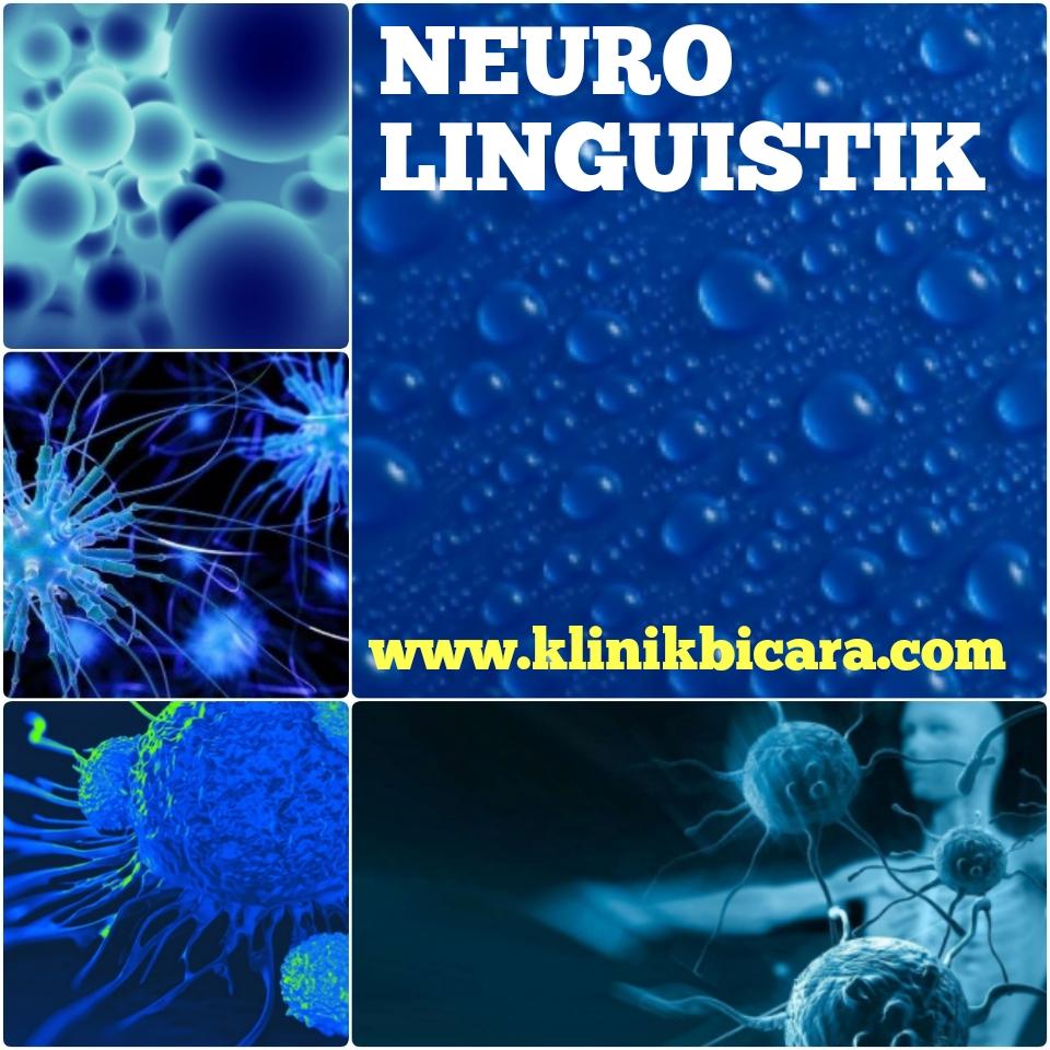 Neurolinguistik: PROSES MEKANISME BICARA DAN BAHASA
